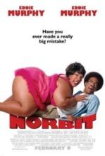 Vizionare online filmul Norbit (2007), cu subtitrare în Română şi calitate HD