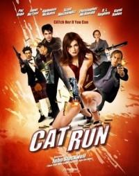 Cat Run 2011