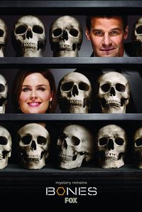 Bones - The Past in the Present  Sezonul 07, Episodul 13