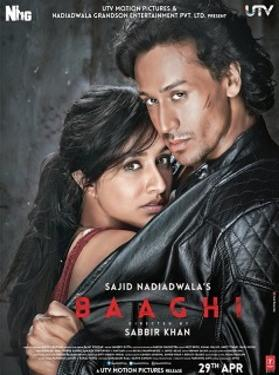 Baaghi: A Rebel For Love 2016